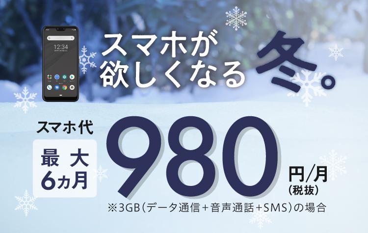 最大6ヵ月980円/月~(SP)